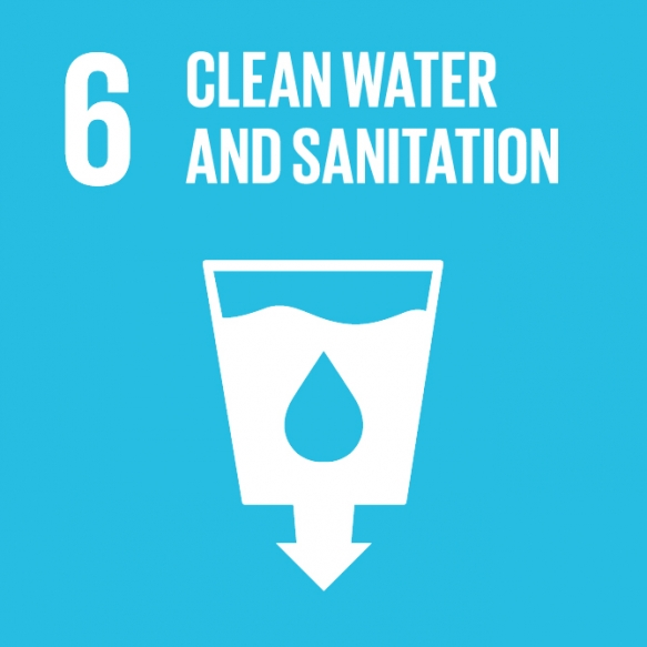 Goal 6. Ensure availability and sustainable management of water and sanitation for all
