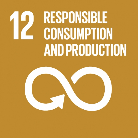 Goal 12. Ensure sustainable consumption and production patterns.