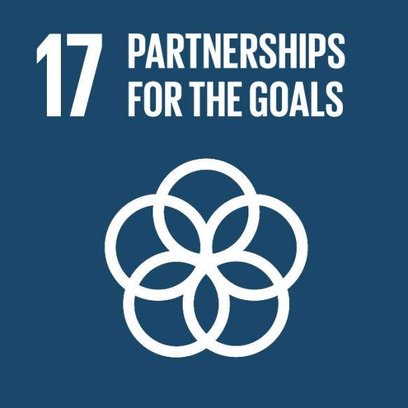 Goal 17. Revitalize the global partnership for sustainable development.