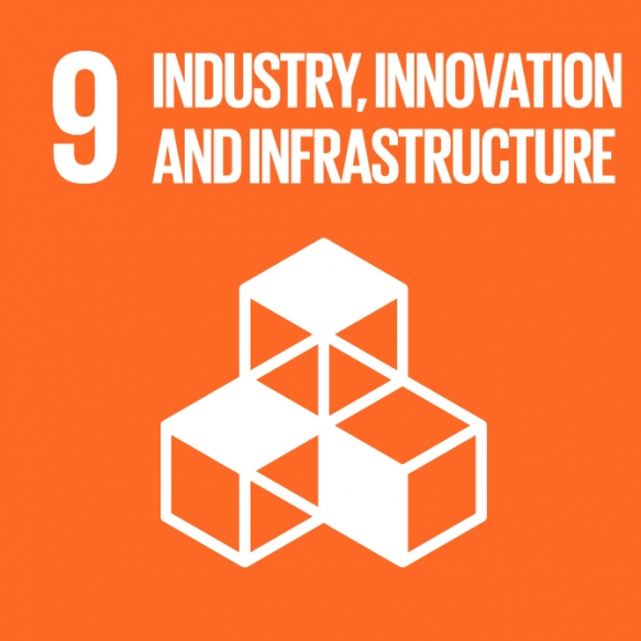 Goal 9. Build a sustainable infrastructure, promote inclusive and sustainable industrialization and foster innovation.
