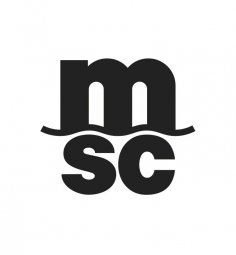 MSC Shared Service Center Riga, SIA PRAKTIKANTS ATSKAIŠU NODAĻĀ